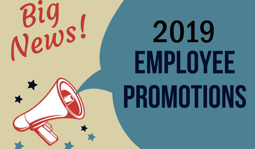 2019 Employment Promotions